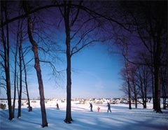 Cross Country Skiing at the Grand Traverse Resort