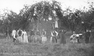 Old Mission Apple Pickers