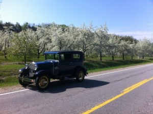 model a and cherry orchard