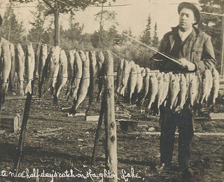 Walleye Glory Days by UpNorth Memories